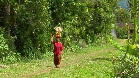A-Woman-Carries-A-Basket-Of-Fruit-On-Her-Head-While-Walking-Down-A-Lush-Path