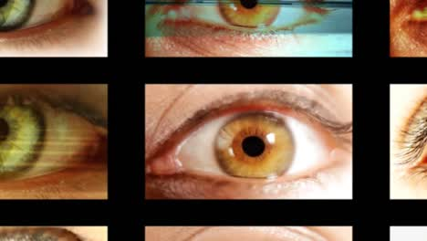 Eyes-Mulitscreen-02