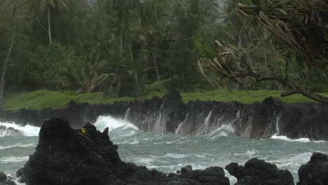 A-Large-Pacific-Storm-Batters-Hawaii-With-Large-Waves-10
