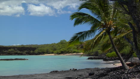 A-Black-Sand-Beach-And-Palms-Line-A-Tropical-Island