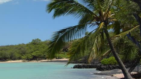 Ein-Schwarzer-Sandstrand-Und-Palmen-Säumen-Eine-Tropische-Insel-1