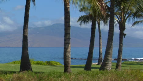 A-Beautiful-Island-Shot-With-Palms-And-Distant-Peaks-In-Hawaii