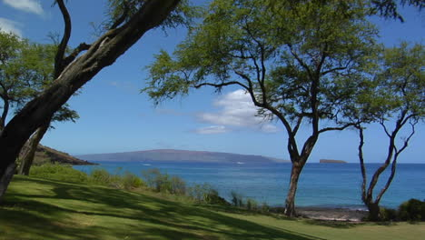 A-Beautiful-Tropical-Vista-Reveals-Trees-And-Islands-In-Hawaii