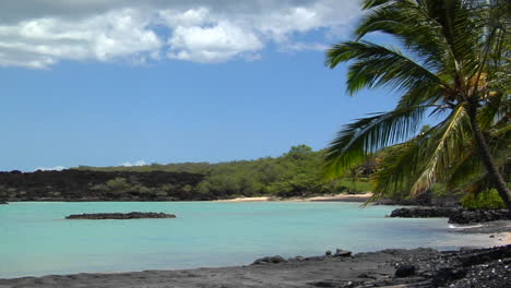 A-Pan-Across-To-A-Beautiful-Black-Sand-Beach-With-Blowing-Palms