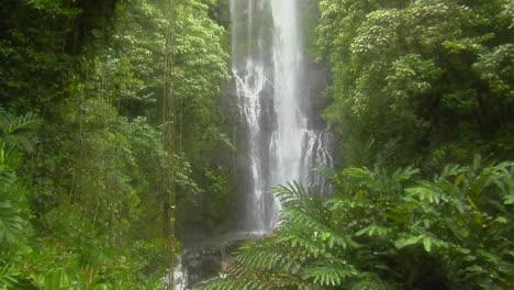 A-Tropical-Waterfall-Flows-Through-A-Dense-Rainforest-In-Hawaii