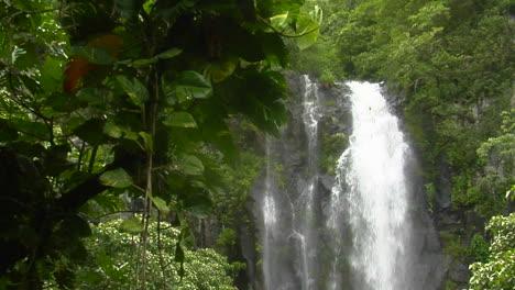 A-Tropical-Waterfall-Flows-Through-A-Dense-Rainforest-In-Hawaii-2