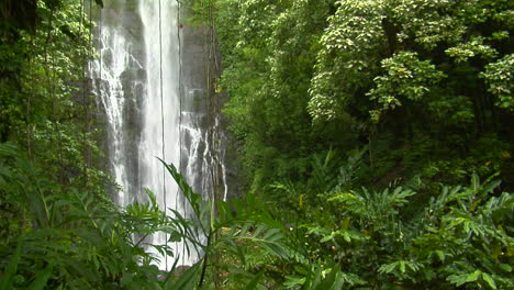 A-Tropical-Waterfall-Flows-Through-A-Dense-Rainforest-In-Hawaii-3