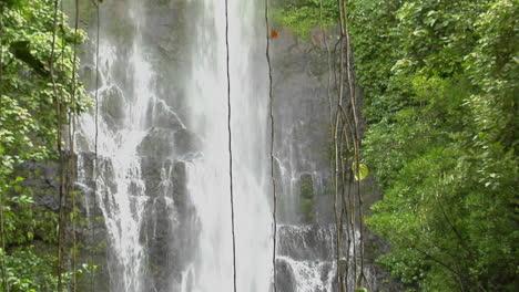 A-Tropical-Waterfall-Flows-Through-A-Dense-Rainforest-In-Hawaii-4