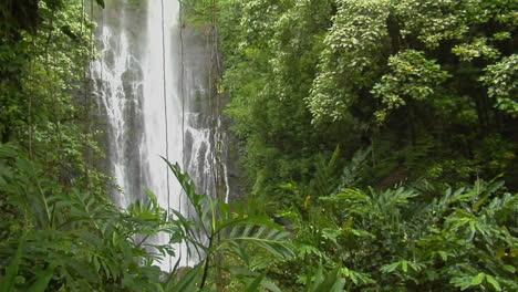 A-Tropical-Waterfall-Flows-Through-A-Dense-Rainforest-In-Hawaii-5