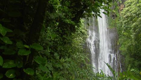 A-Tropical-Waterfall-Flows-Through-A-Dense-Rainforest-In-Hawaii-6
