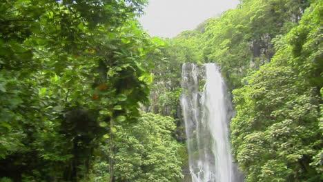 A-Moving-Shot-Through-Jungle-Reveals-A-Tropical-Waterfall