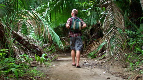 A-man-hikes-on-a-trail-into-a-tropical-forest