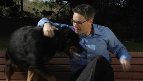 Un-Perro-Salta-Al-Banco-Del-Parque-Para-Que-Un-Hombre-Pueda-Acariciarlo-Y-Prestarle-Atención