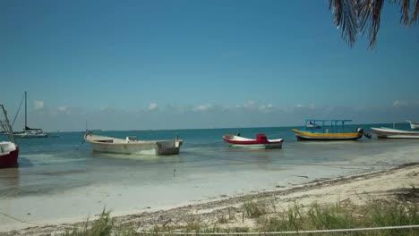 Isla-Boats-DP-00