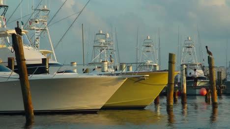 Isla-Mujeres-Boats-02