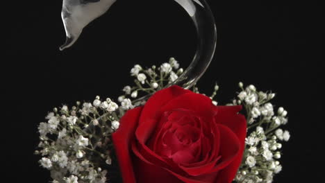 A-red-rose-in-a-swan-shaped-vase-surrounded-with-babies-breath