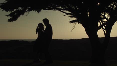 Un-Par-De-Bailes-Lentos-Debajo-De-Un-árbol