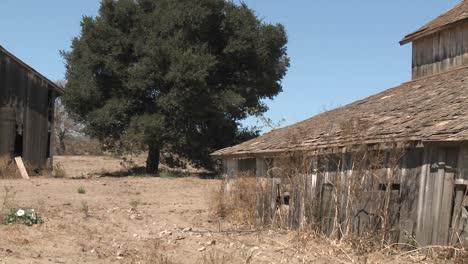 Pan-across-nn-old-barn-in-the-Salinas-Valley-Monterey-County-California
