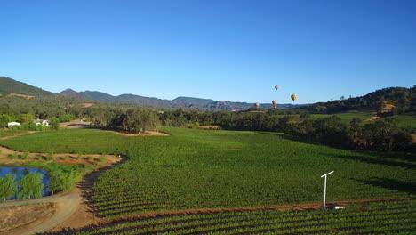 Eine-Niedrige-Antenne-über-Reihen-Von-Weinbergen-Im-Sonoma-County-In-Nordkalifornien-Mit-Heißluftballons-In-Der-Ferne