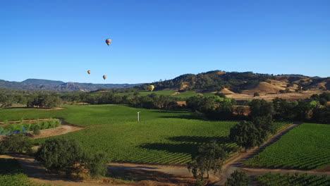 Eine-Niedrig-Ansteigende-Antenne-über-Reihen-Von-Weinbergen-Im-Nordkalifornischen-Sonoma-County-Mit-Heißluftballons-In-Entfernung-5