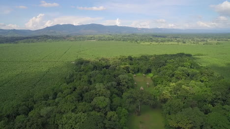 An-aerial-shot-of-the-Mayan-ruins-of-Quirigua