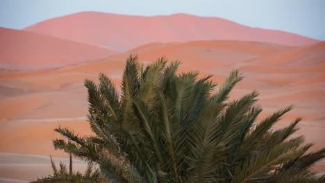 Merzouga-Sahara-Desert-00