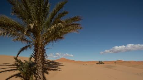 Merzouga-Sahara-Desert-06