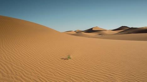 Desierto-Del-Sahara-Merzouga