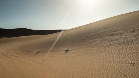 Merzouga-Sahara-Desert-13