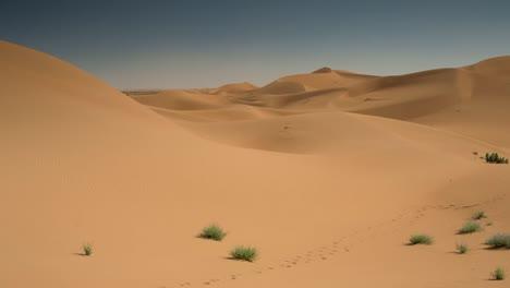 Merzouga-Sahara-Desert-23
