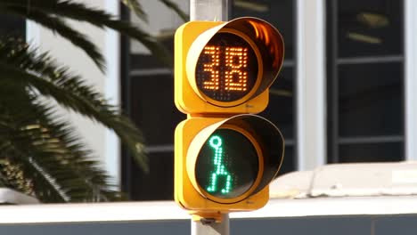 Mexico-City-Traffic-Light0