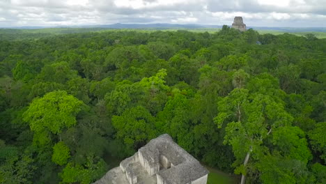 Spectacular-aerial-shot-over-the-treetops-and-Tikal-pyramids-in-Guatemala