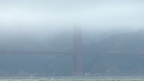 A-seagull-surveys-the-Golden-Gate-Bridge-obscured-by-fog-in-the-background