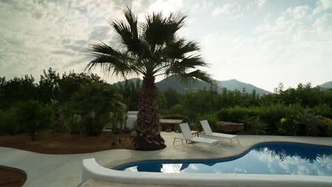 Paradise-Pool-14