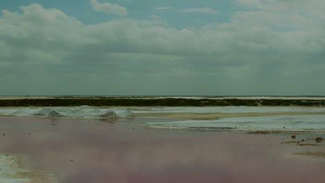 Pink-Sea-03