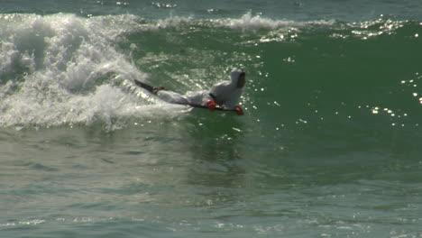 A-bodyboarding-surfer-in-a-hazmat-suit-rides-a-wave