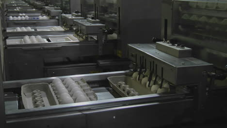 Automated-machinery-processes-cartons-of-eggs-in-a-factory
