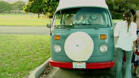 A-Dalmatian-in-a-VW-bus-watches-women-outside