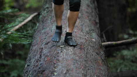 A-woman-walks-across-a-fallen-log-in-a-forest