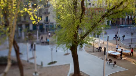 Placa-Barceloneta-01