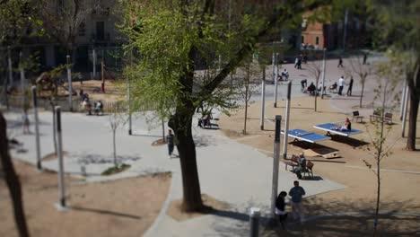 Placa-Barcelonoleta-00