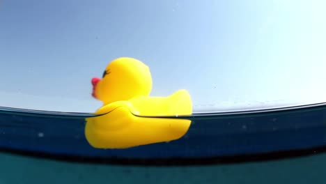 Plastic-Duckie-00