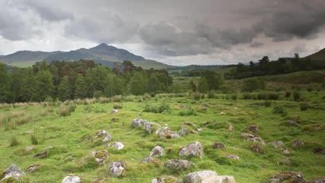 Piedras-de-hierba-escocesa-00