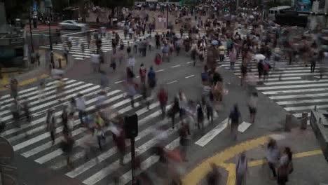 Scramble-Crossing-407