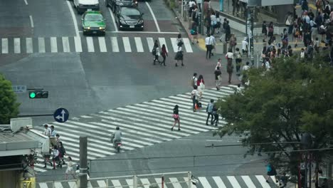 Scramble-Crossing-View-02