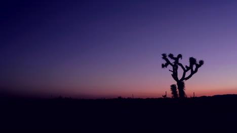 The-sky-darkens-in-the-desert-at-golden-hour