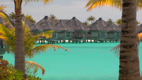 Tahitian-palm-trees-gently-blow-in-the-wind-with-turquoise-water-and-huts-over-the-water-in-the-background