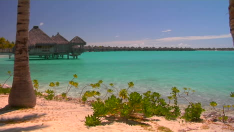 Tahitian-palm-trees-and-huts-rest-over-turquoise-water-Slow-zoom-in