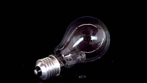 Slow-Motion-Bulb-00