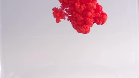 Slow-Motion-Liquids-